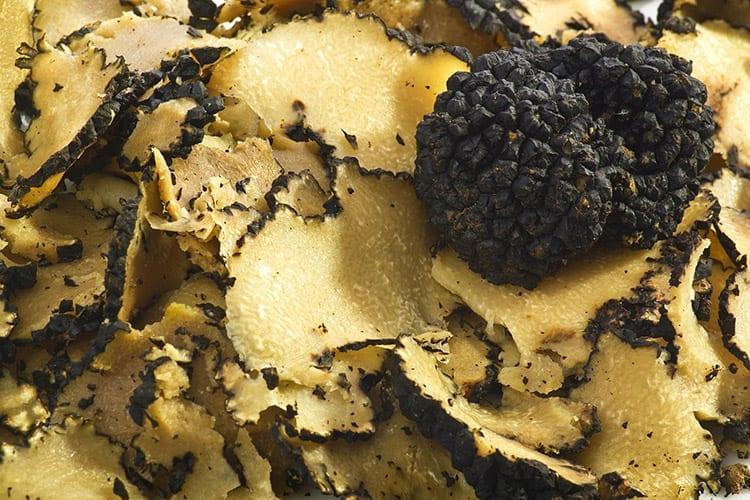 Zwarte truffel, Umbrië