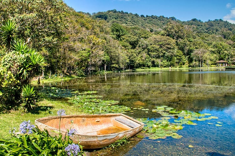 Selva Negra natuurreservaat, Matagalpa