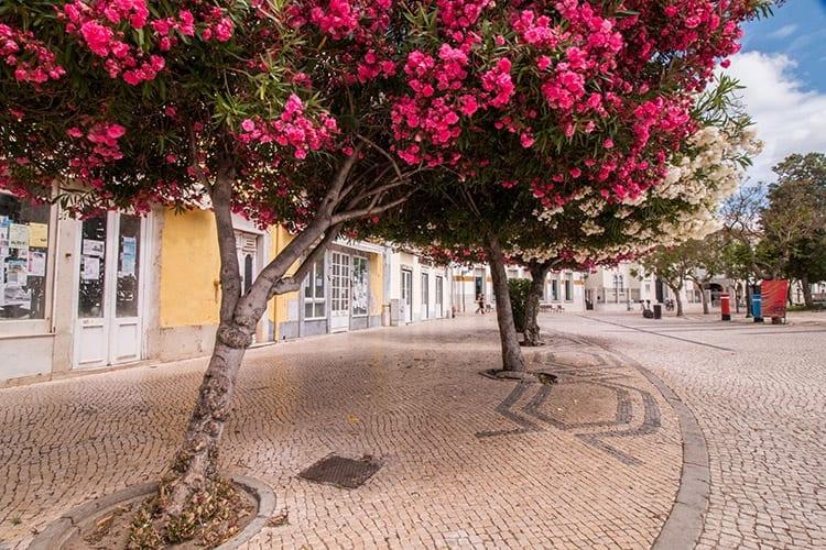 Faro centrum