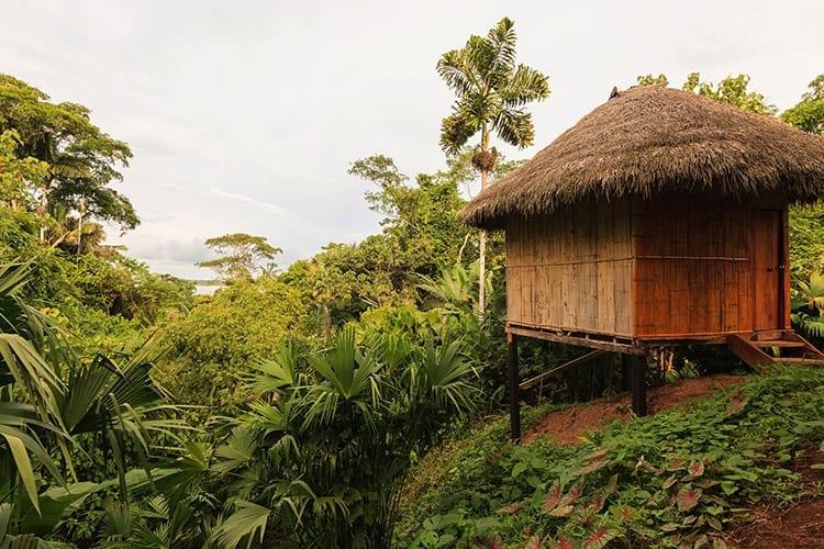Yasuní National Park lodge