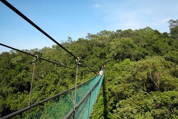National Park Ixpanpajul