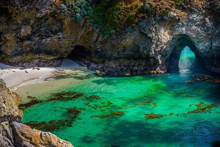 Point Lobos, Highway 1
