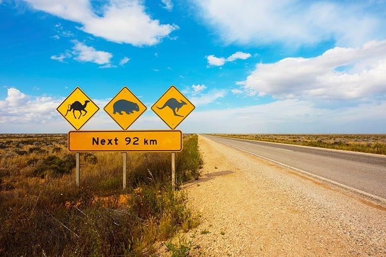 Nullarbor Plain, Australië