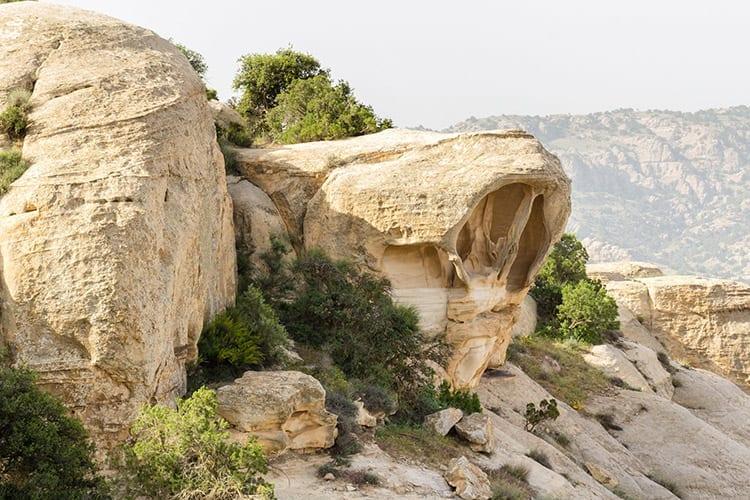 Dana Natuurreservaat