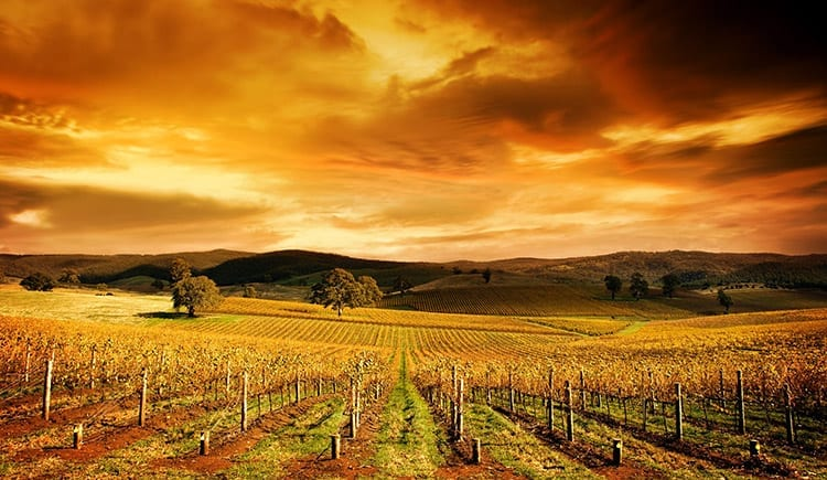 Barossa Valley, Adelaide