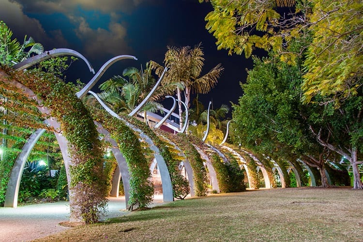 Mangrove Boardwalk, Brisbane