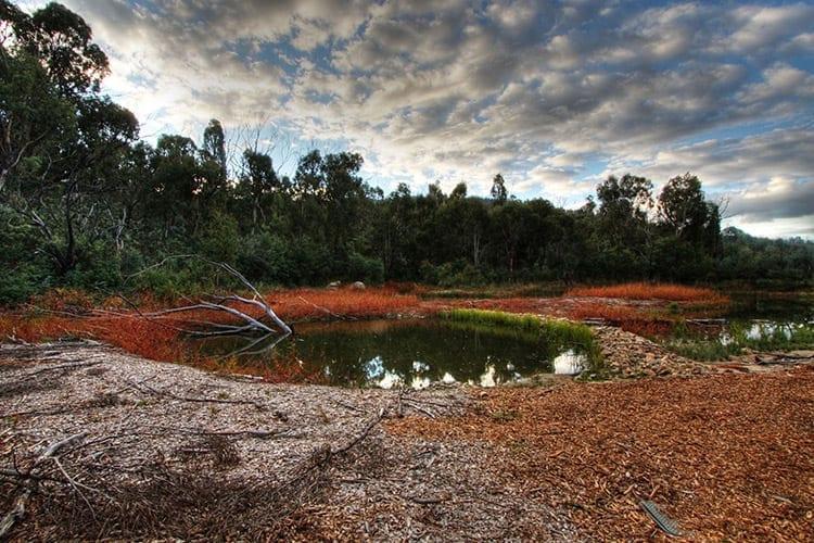 Tidbinbilla natuurreservaat, Canberra