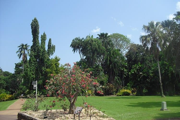Botanic Gardens in Darwin