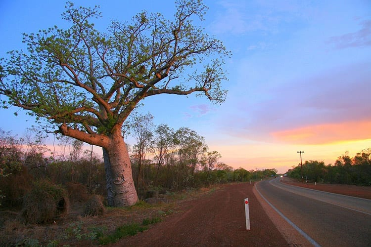 reat Northern Highway, Australië