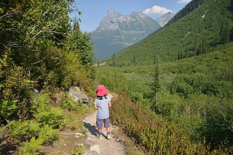 Balu Pass Trail, Glacier National Park