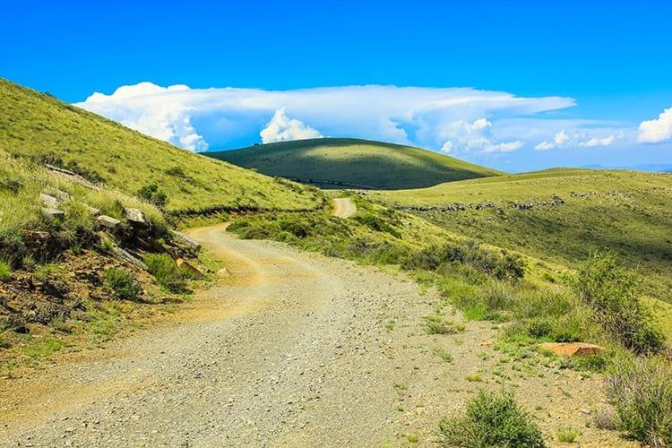 Mountain Zebra National Park, Zuid-Afrika