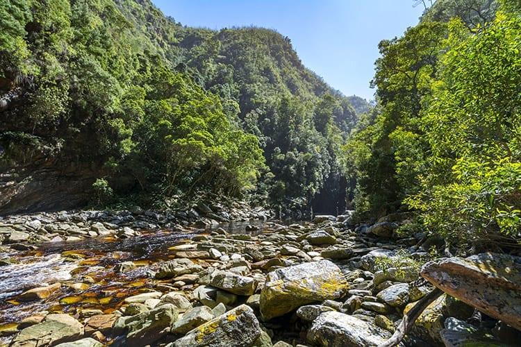 Storms River Canyon, Tsitsikamma National Park