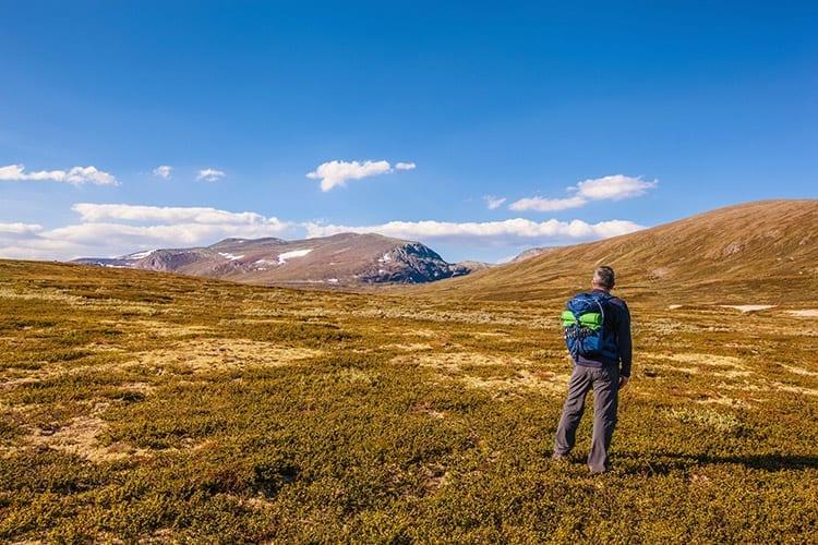 Wandelen in het Dovrefjell-Sunndalsfjella National Park