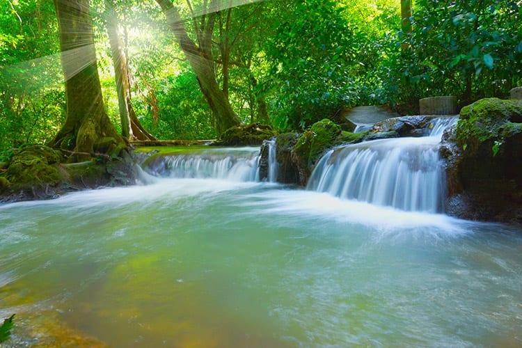 Than Bok Khorani National Park, Thailand