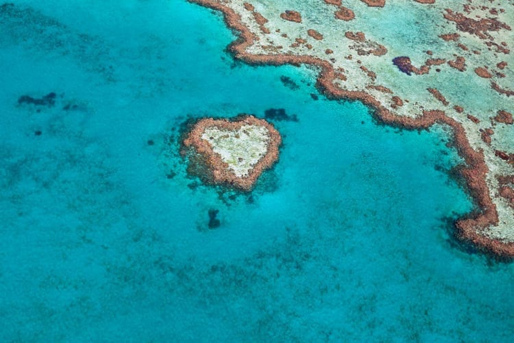 Heart Reef in het Great Barrier Reef