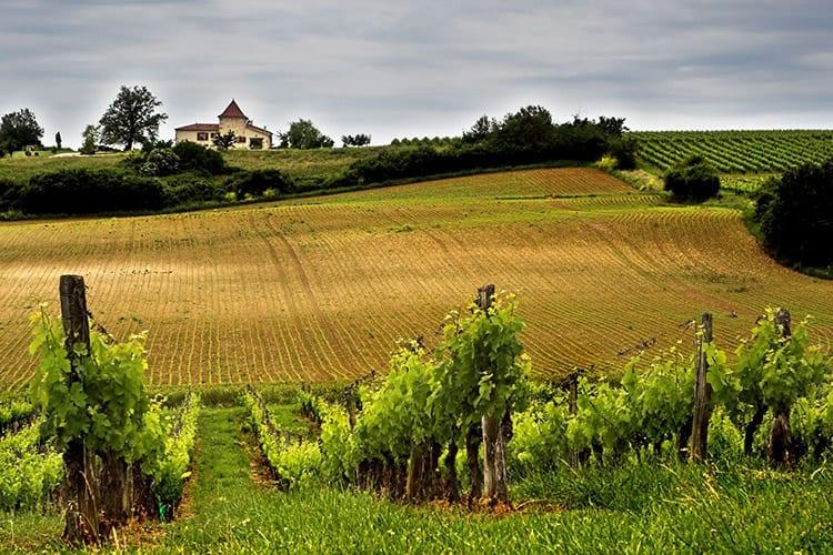 Wijnstreek Bordeaux