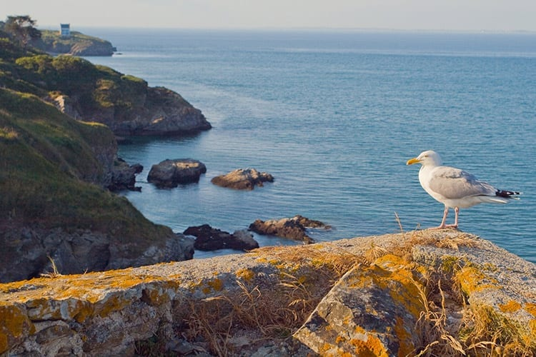 Belle-Île-en-Mer, Bretagne