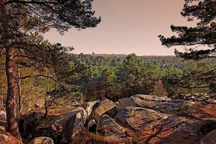 Forêt de Fontainebleau, Île-de-France