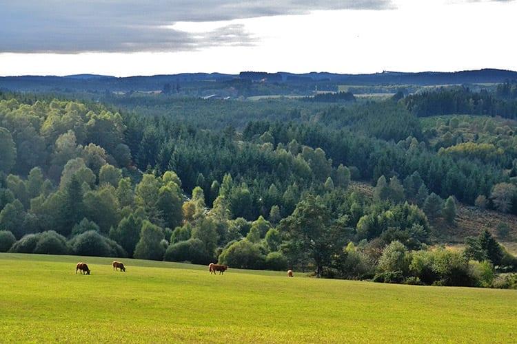 Millevaches, Limousin
