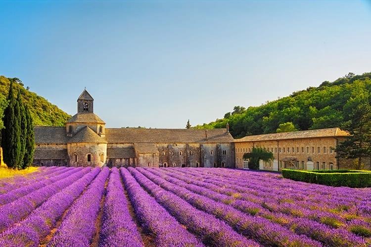 Abbaye de Sénanque, Provence