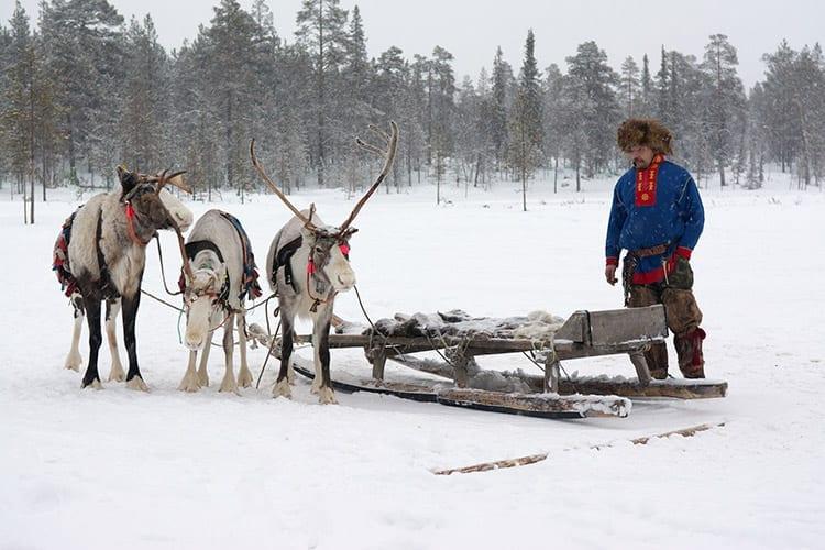 Sámi, Zweeds Lapland