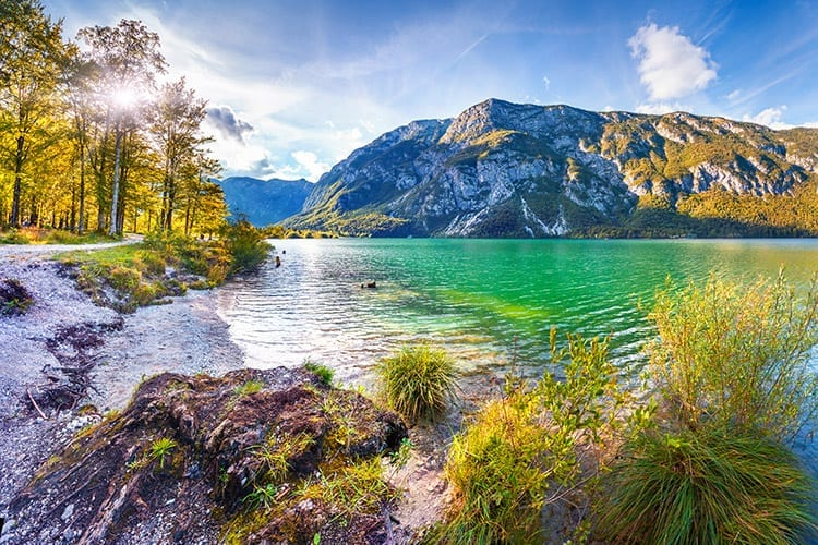 Meer van Bohinj, Slovenië
