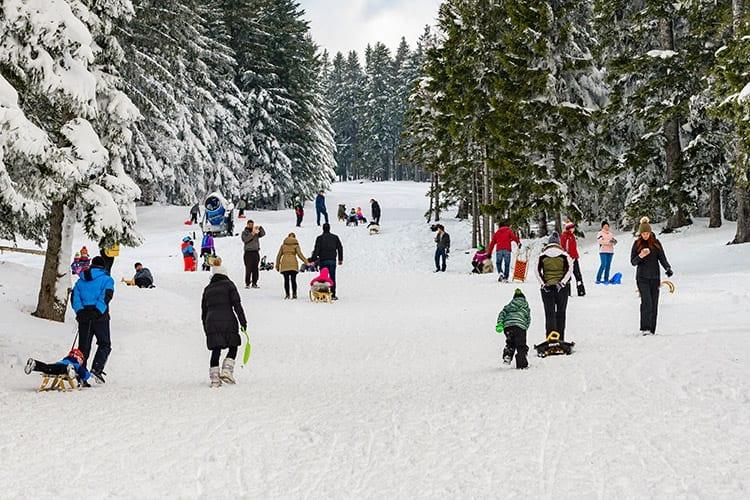 Skiegebied bij Rogla, Slovenië