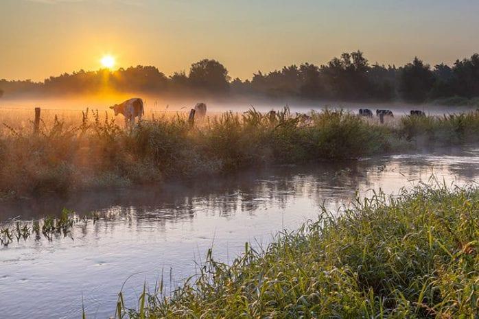 Rivier de Dinkel in Twente
