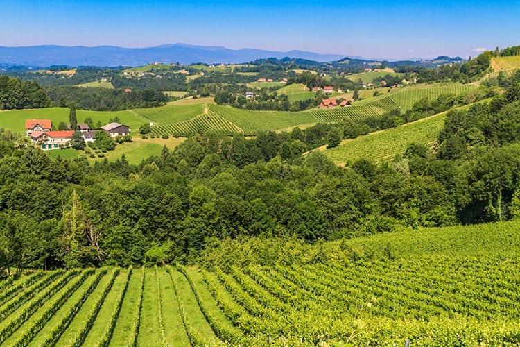 Wijnroute in Zuid-Stiermarken