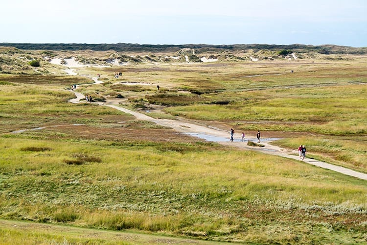 Natuurgebied De Slufter, Texel