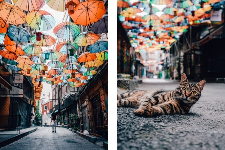 Umbrella Street, Istanbul